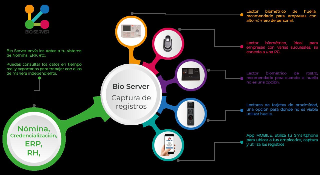 diagrama-bioserver2